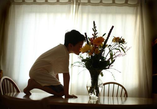 孩子被确诊为自闭症后,家长要关注哪些问题?